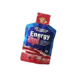 Victory Endurance Energy Up