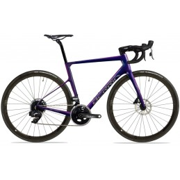 BERRIA BELADOR 9.1 Cyan Purple