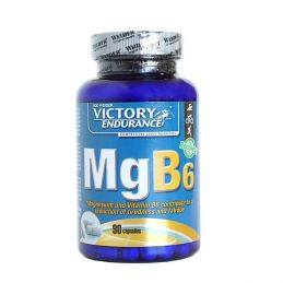 Victory Endurance MGB6